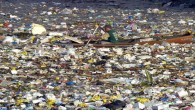 Plastic, plastic, everywhere: but the smaller particles hidden beneath the surface may be the greater threat. You can't...