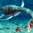 "A ""previously unknown species of dinosaur"" may have been discovered at a quarry site near Peterborough, Cambridgeshire. The five and half metre long plesiosaur, nicknamed […]"